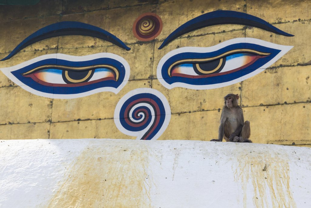 syambhu
