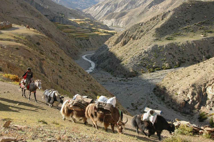 Upper Dolpo to Jomsom Trek 5